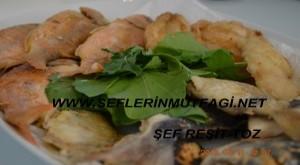 Mercan balığı tava