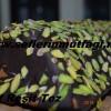 Fıstıklı çikolatalı baton kek